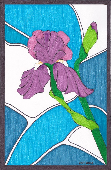 Irises (c) JAT 2013